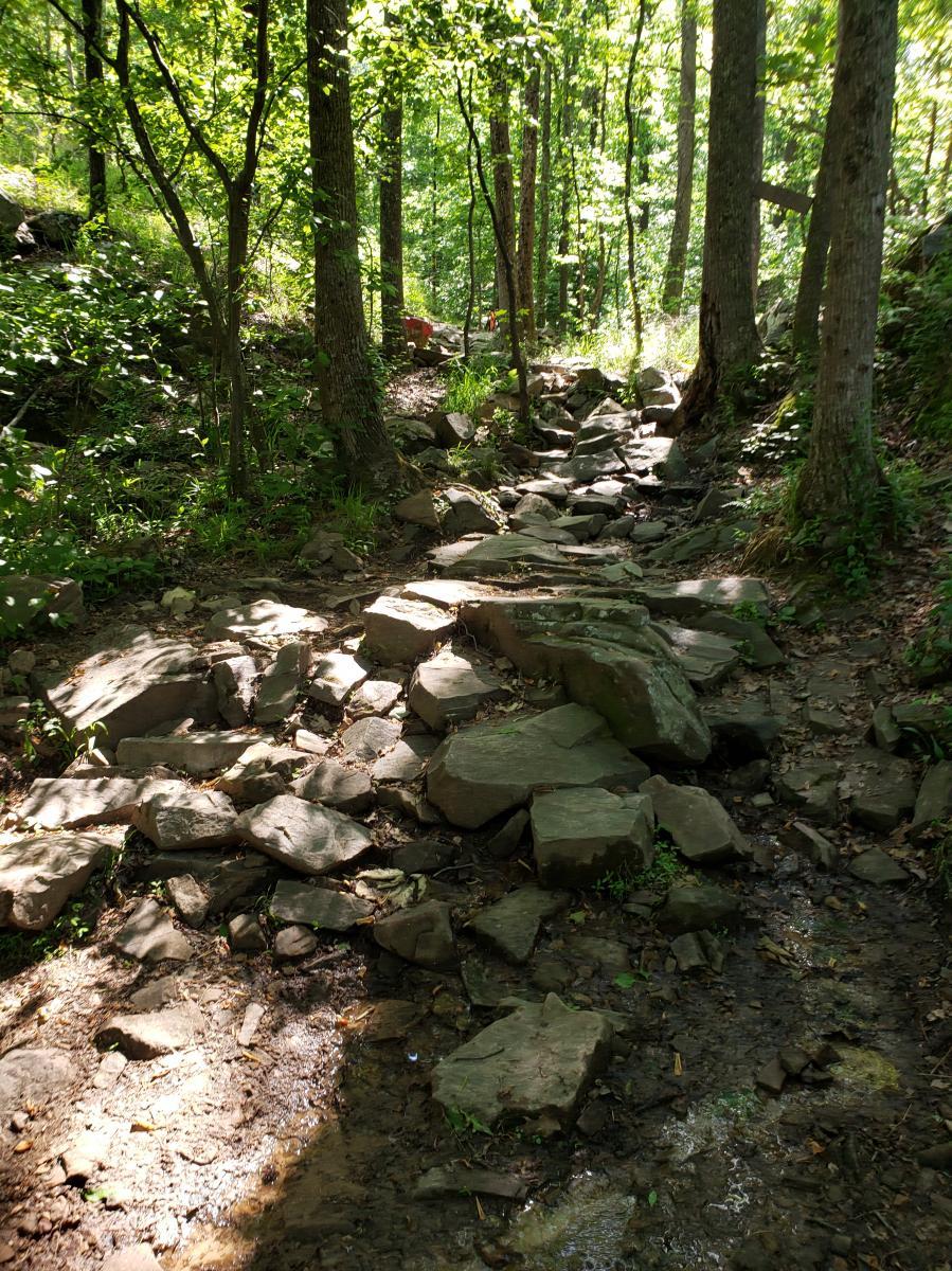 Oak Mountain State Park Bump Trail